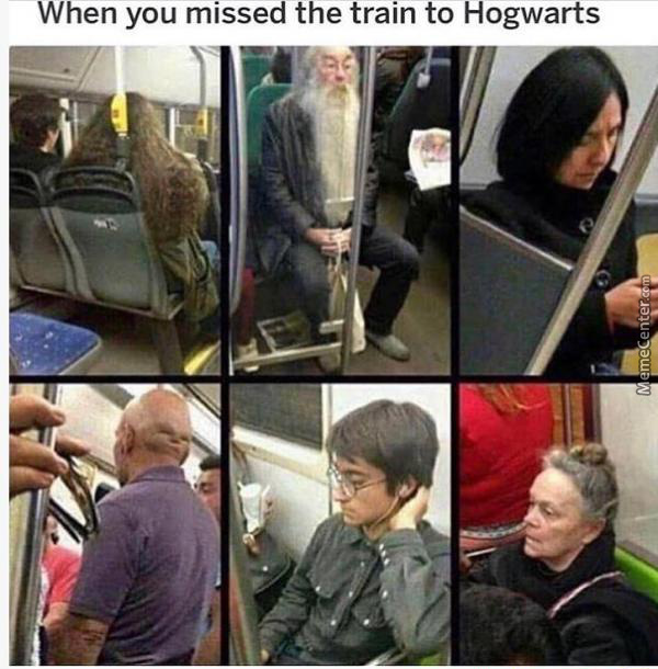 Sucks To Live The Life Of A Muggle Now Huh ?