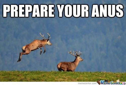 Funny Reindeer Meme : Surprise mothafucka memes. best collection of funny surprise