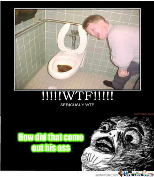 Surprise In The Toilet
