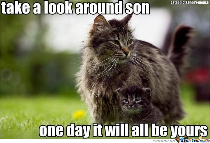 Take Look Around Son. One Day It Will All Be Yours