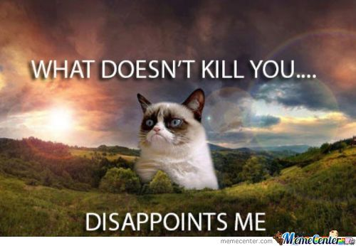 What doesn't kill you -Tard The Cat