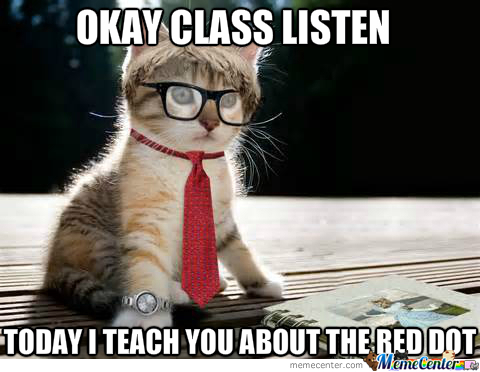 Teacher Cat 2