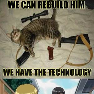 Technology Has Made The Purrfect Weapon By Unknownjedi