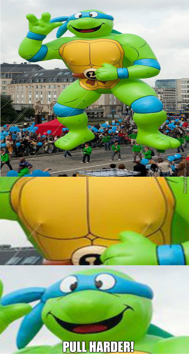 Teenage Mutant Kinky Turtle