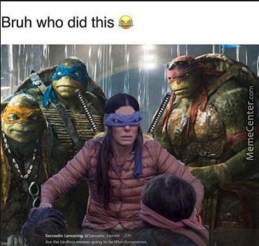 Teenage Mutant Ninja Birdbox