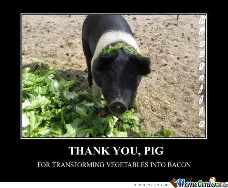 Thank You Pig