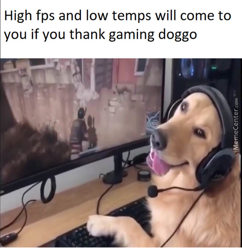 Thanks Doggo!