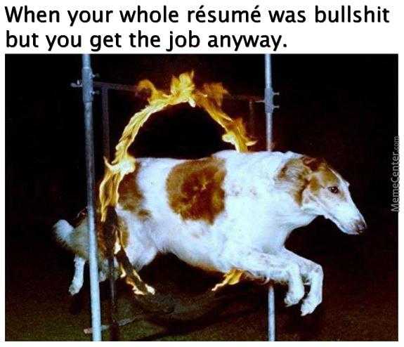 That's One Heck Of A Doggo Right There
