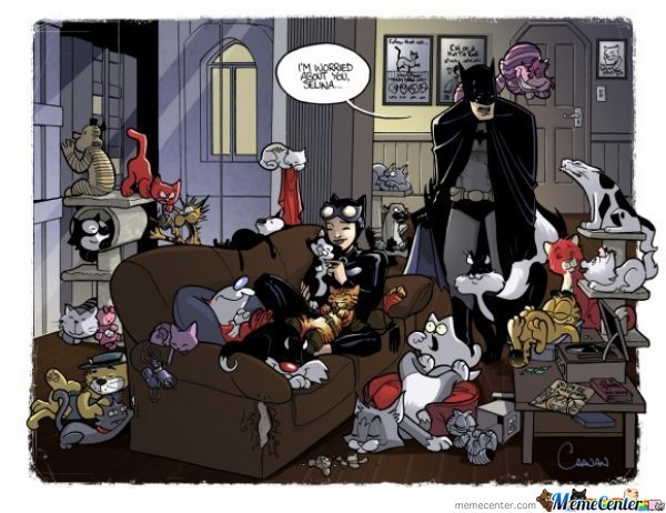 That's Quite A Lot Of Pussy You Got Ever There Batman