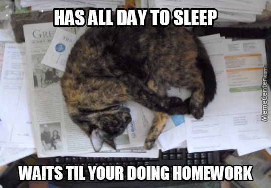 That's Some Nice Homeworks There, Be A Shame If Something Were To.. Happen To It