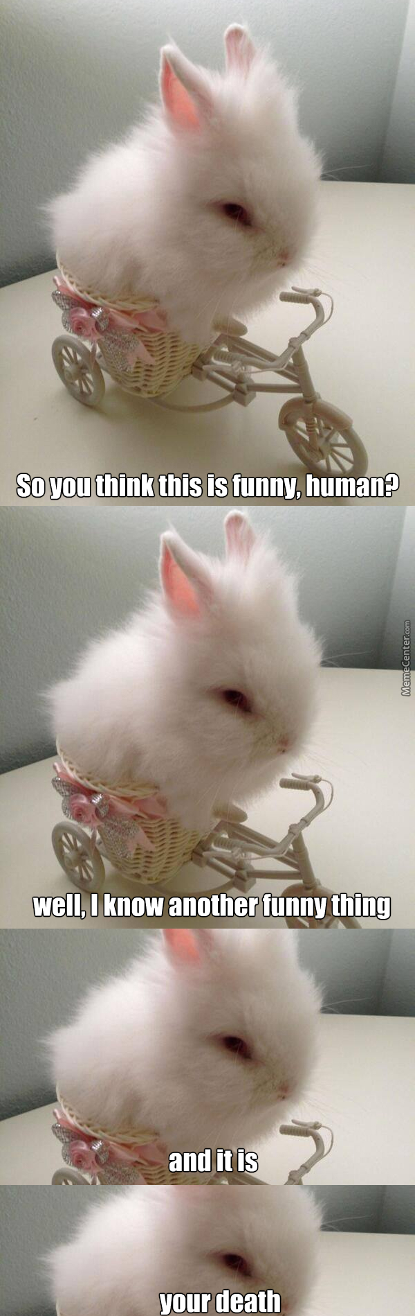 That's The Most Pissed Off Bunny I've Ever Seen