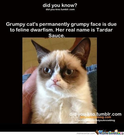 That's Why He's So Grumpy
