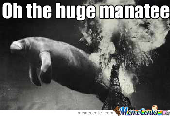 That Is A Big Sea Cow By Pauljohnson Meme Center
