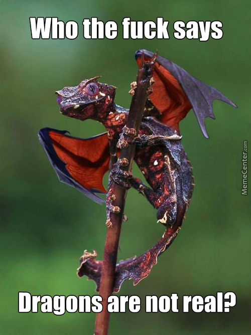 That Is A Satanic Tailed Gecko People
