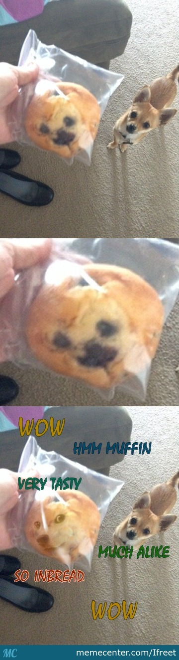 That Must Come From A Muffin Doge Factory!