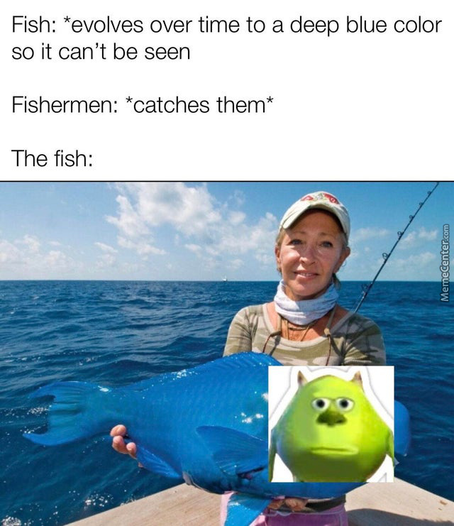 That Poor Blue Fish