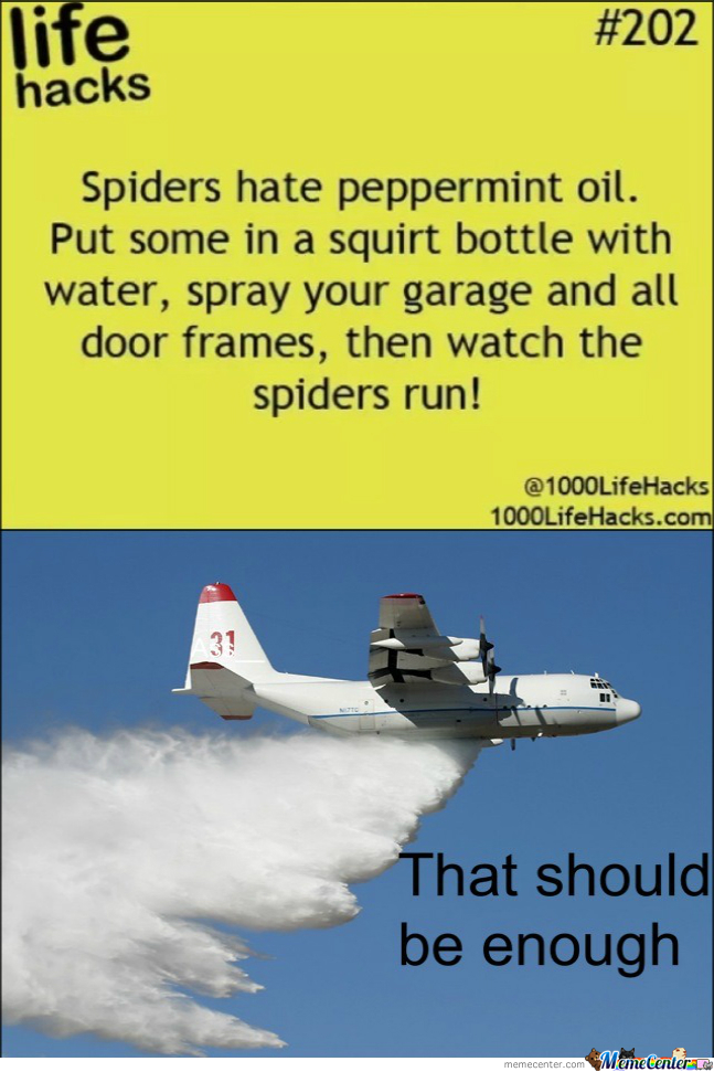 That Right Spiders. Run!