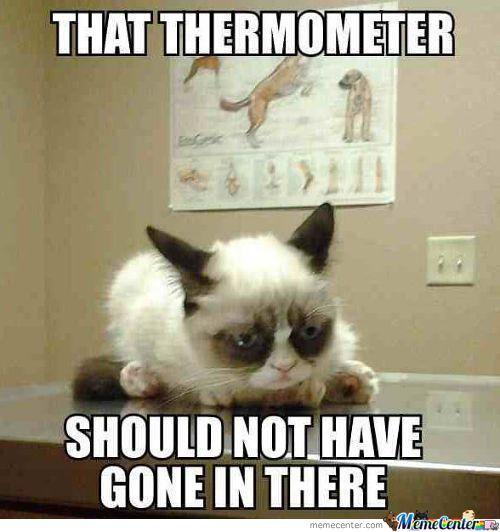 That Thermometer...