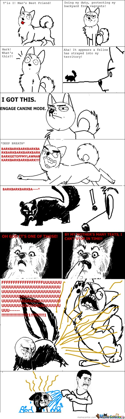 That Was No  Cat  !!!!