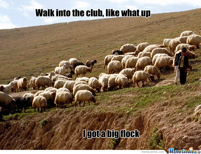Thats A Mighty Big Flock There Son...