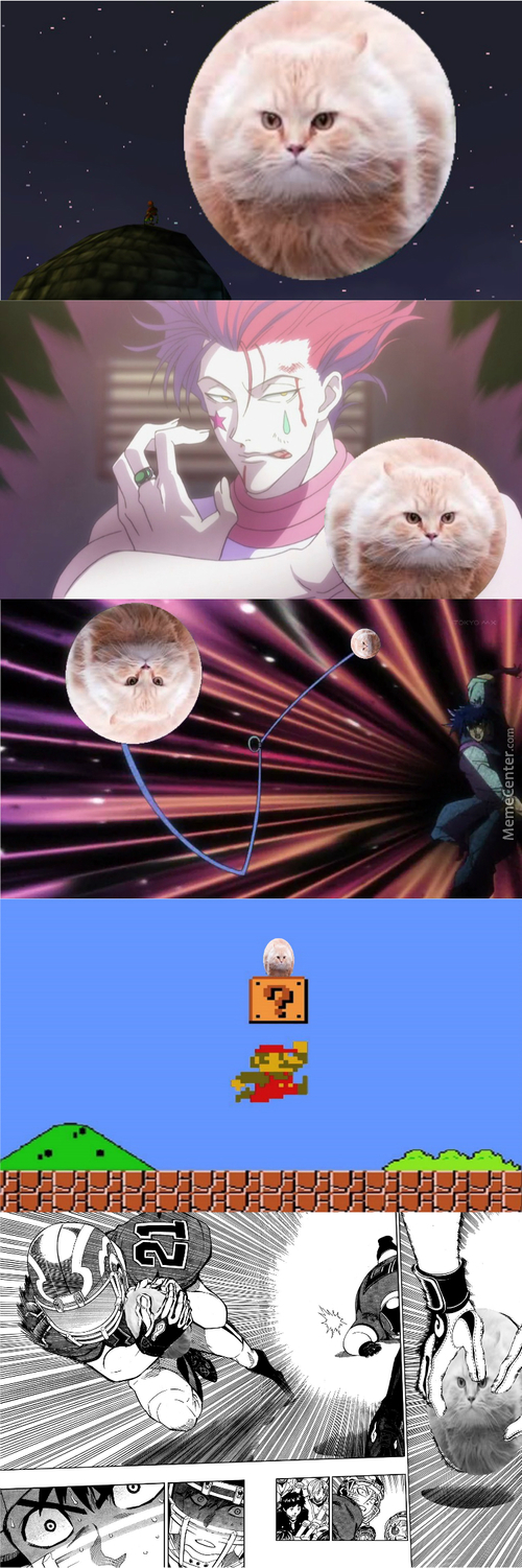 The Adventures Of A Cat (Credits To Finger_V For The Png)