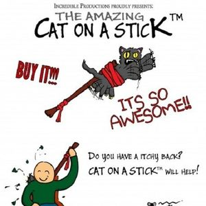 the amazing cat on a stick by lostinwonderland meme center