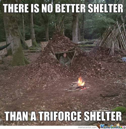 The Best Shelter