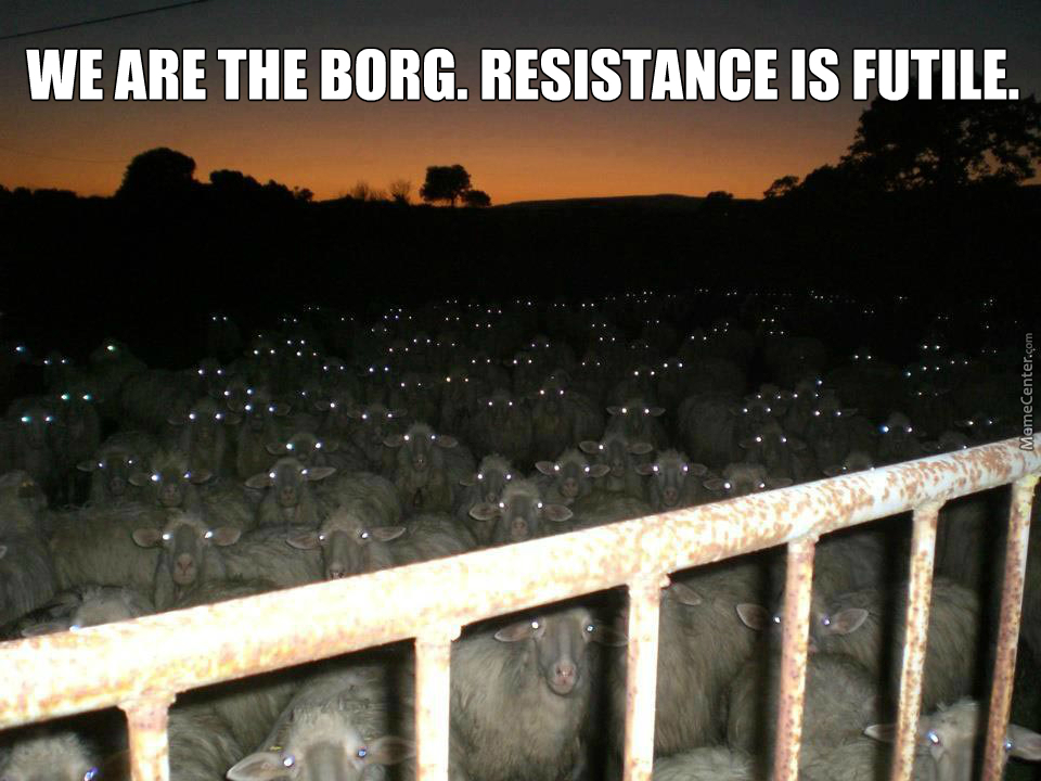 the borg_o_4764387 i am locutus of borg you will respond to my questions memes best