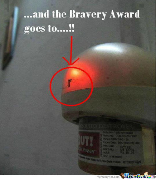 The Bravery Awards Goes To Him