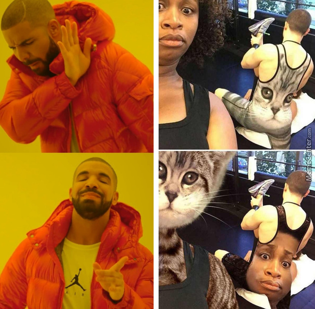 The Cringe On The Cat'S Face