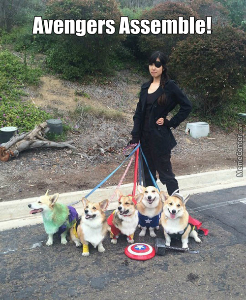 The Cutest Avengers Cosplay