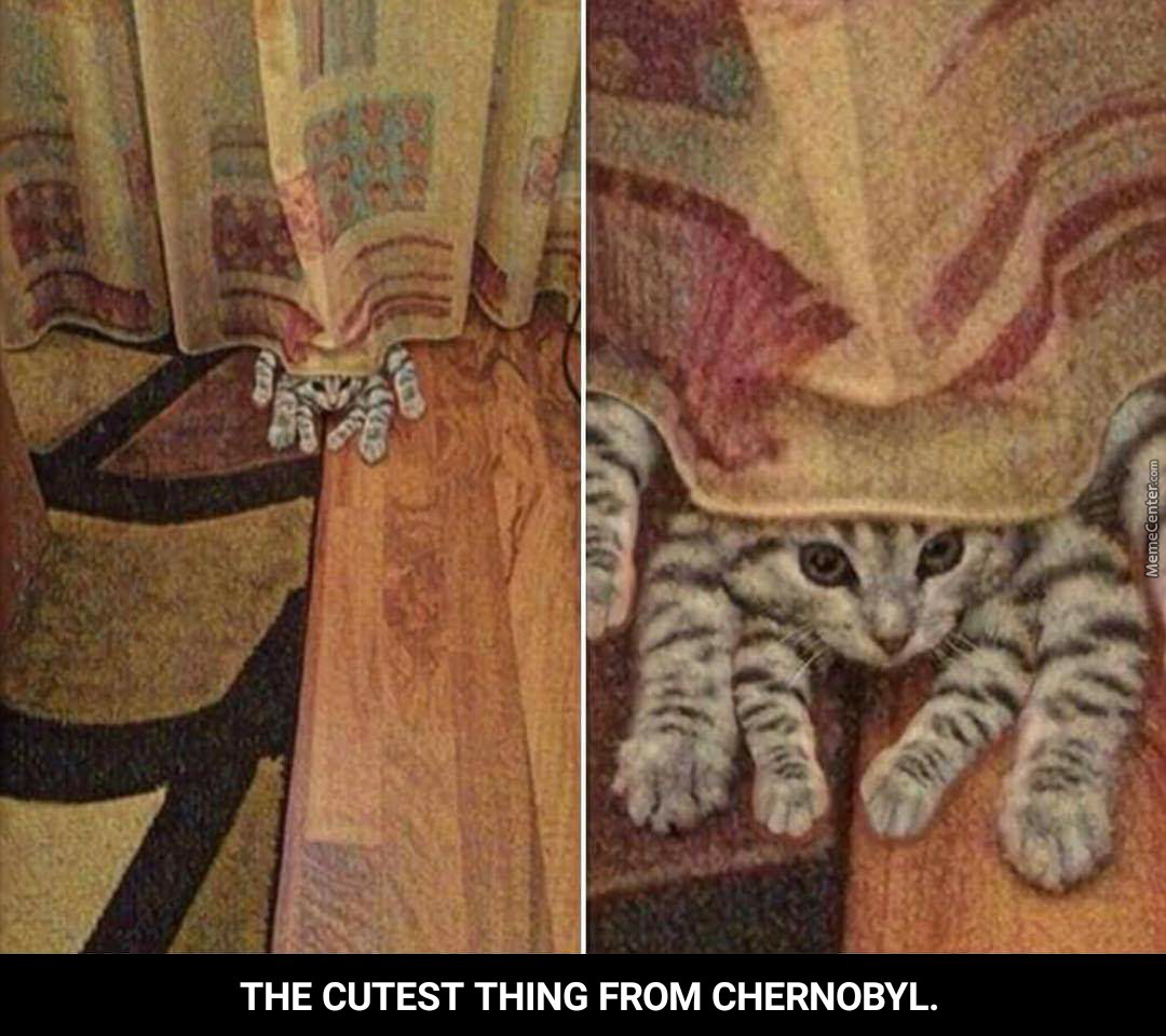 The Cutest Thing From Chernobyl