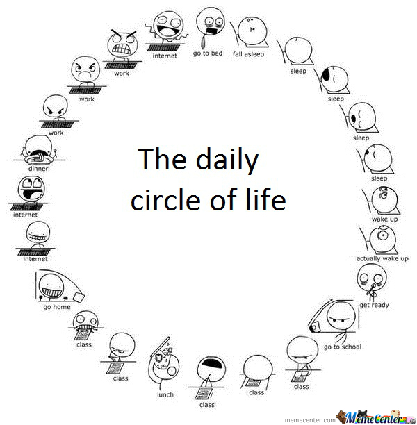 Funny Circle Of Life Meme : The daily circle of life by kaxpa meme center