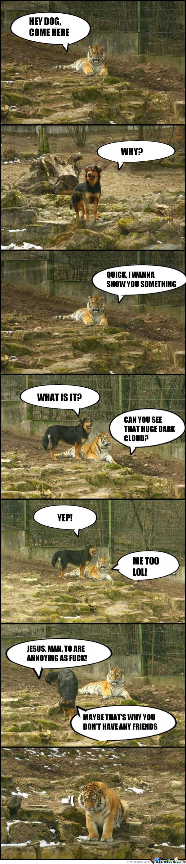The Dog And The Tiger