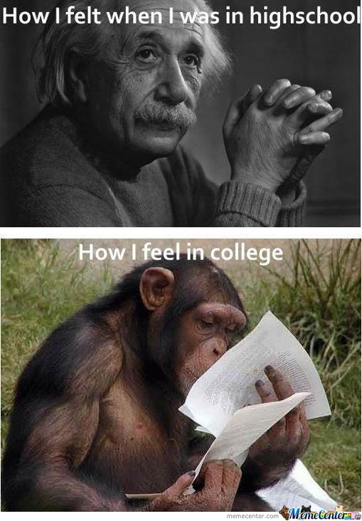 The Education..