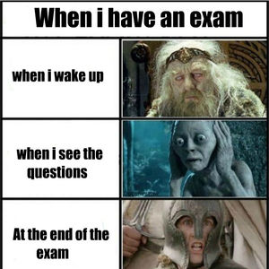 Lord Of The Rings Exam Day