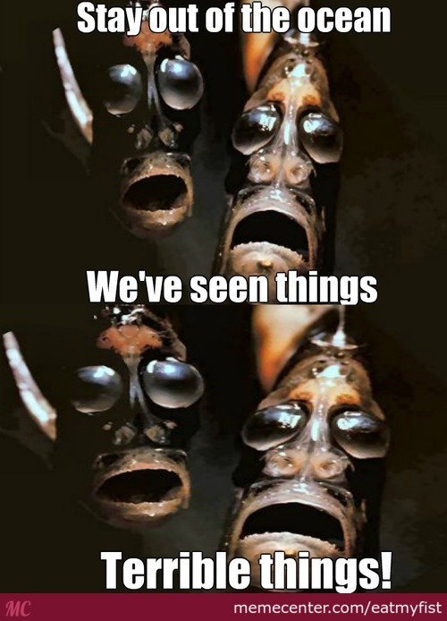 The Fishy Faces Of Fear