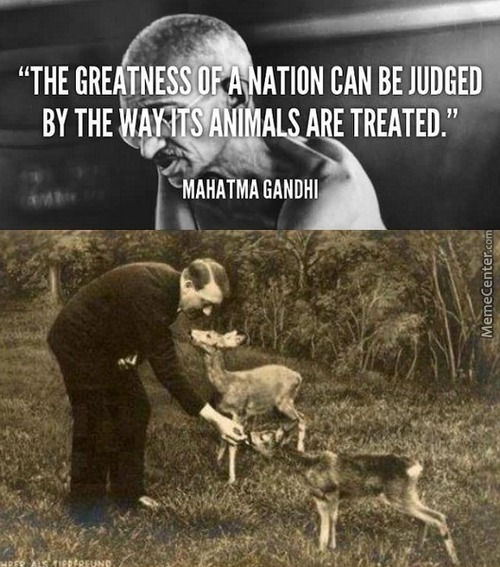 The Greatness Of A Nation Can Be Judged By The Way It's Animals Are Treated