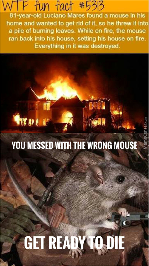 The Jagdmouse