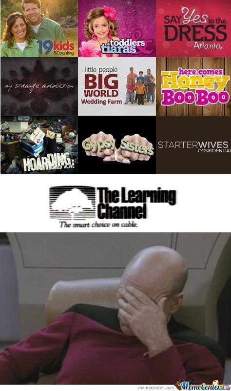 The Learning Channel Facepalm