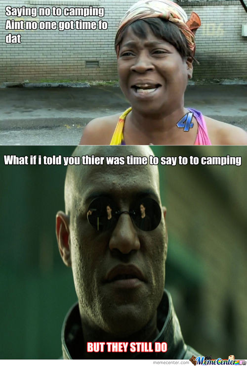 The Logic Of Camping