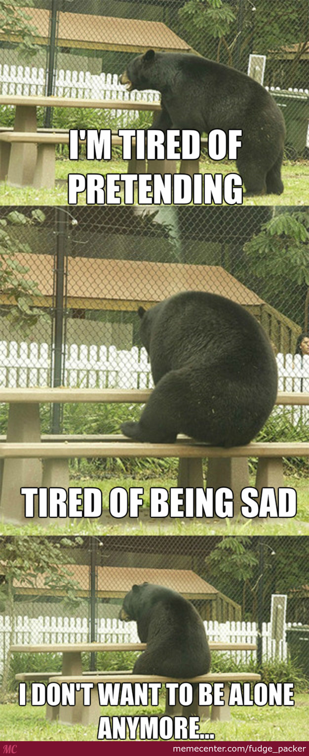 The Lonely Bear With No One To Be With
