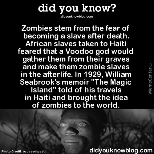 The More You Know My Fellow Zombies