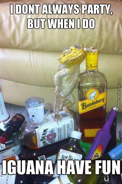 The Most Interesting Reptile (Idk What That Is, Soz)