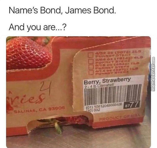 The Name Is Bond