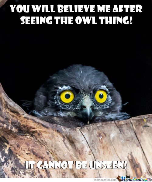 The Owl Thing Cannot Be Unseen!