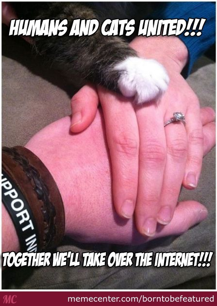 The Pact That Defined The Internet.