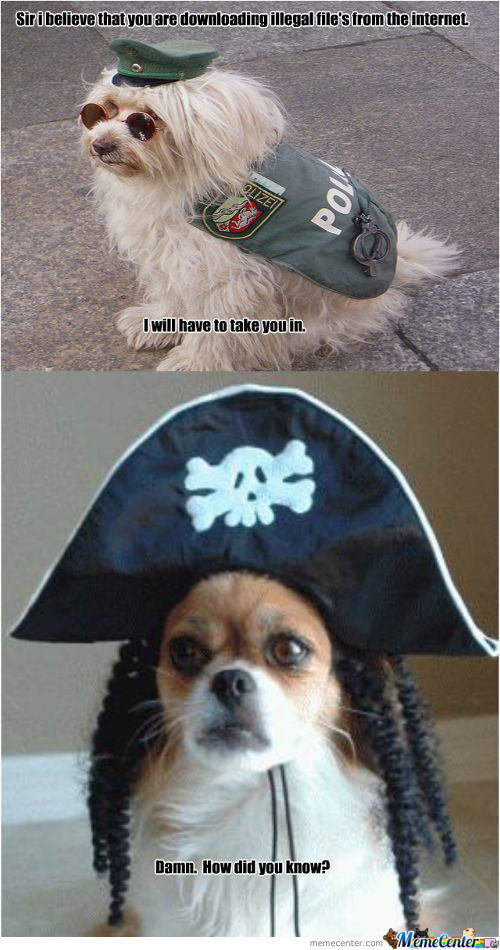 The Pirating Dog