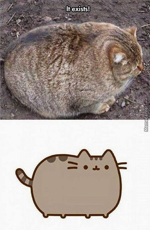 The Real Pusheen