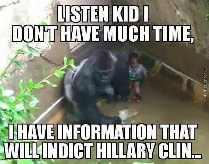 The Real Reason Why Harambe Died.